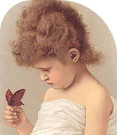 biri with butterfly
